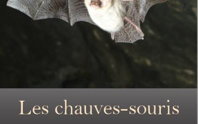 Notre brochure sur les chauves-souris valaisannes vient de sortir!