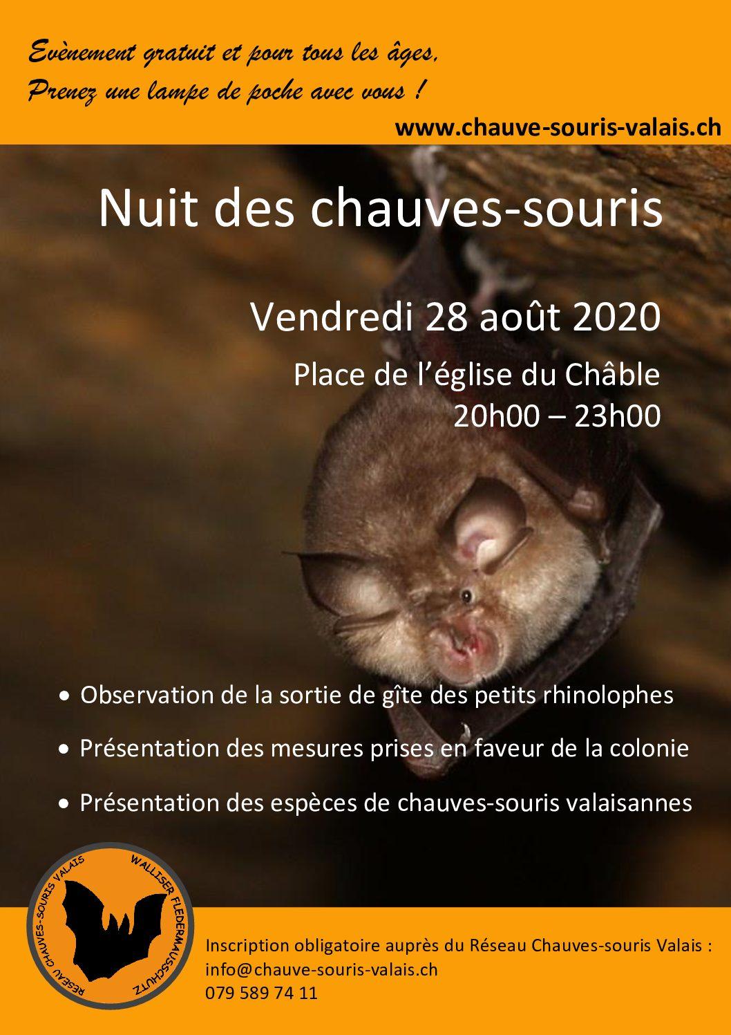 Nuit des Chauves-souris 2020
